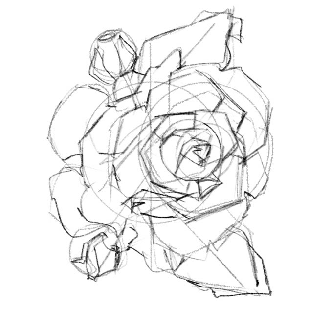 bước 3 luyện vẽ sketch